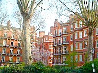 Barkston Gardens London